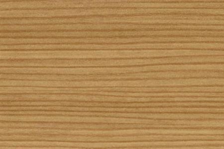 Horská borovice R09