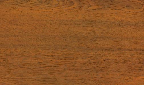 Zlatý dub